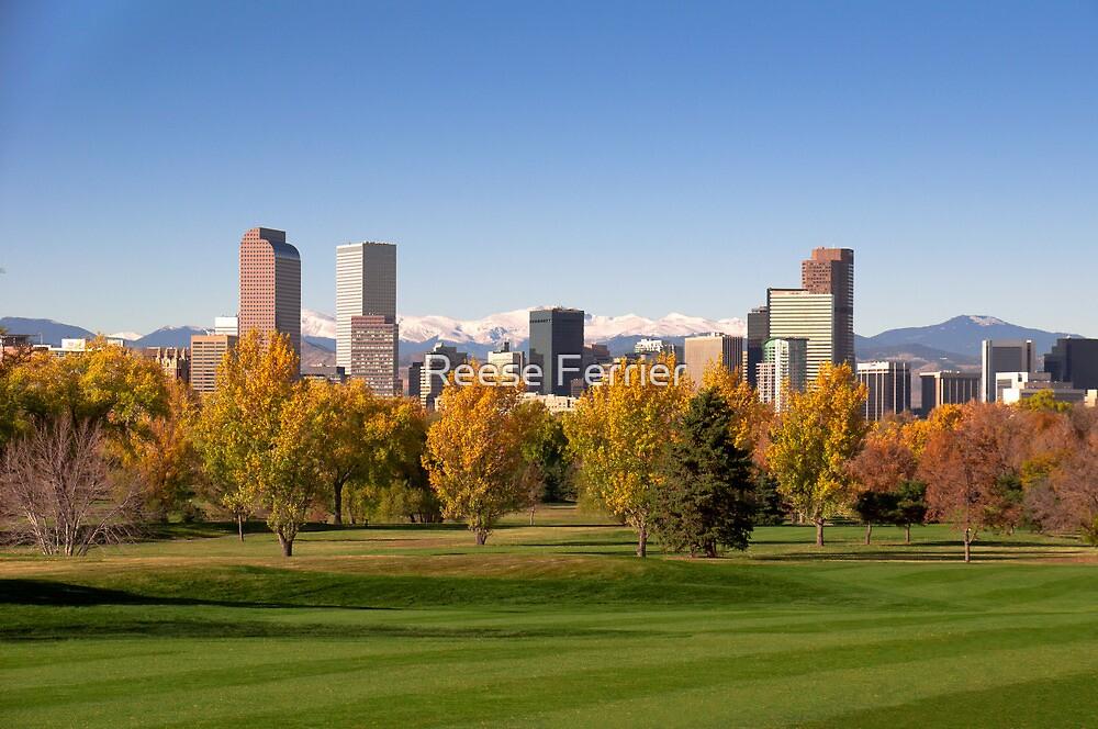 Denver Skyline by Reese Ferrier