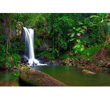 Curtis Falls - Tamborine Mountain Photographic Print