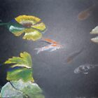 pastel fish pond by Annie Wise