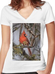 Male Northern Cardinal in Cedar Tree - Ottawa, Ontario Women's Fitted V-Neck T-Shirt