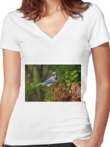 Blue Jay on Stump - Ottawa, Ontario Women's Fitted V-Neck T-Shirt