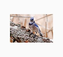 Blue Jay on Log - Ottawa, Ontario Unisex T-Shirt