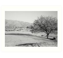 Black and White Sparse Desert Art Print