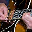 Blues Picking by Ken Scarboro