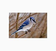 Blue Jay in Shrub Unisex T-Shirt