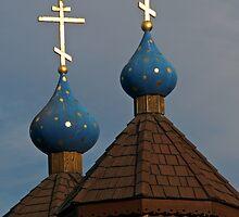 St Herman's Orthodox Seminary by Ken Scarboro