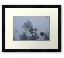 Dance of the trees Framed Print