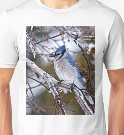 Blue Jay on Ice Covered Branch - Ottawa, Ontario T-Shirt