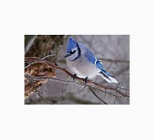 Blue Jay in Tree - Ottawa, Ontario Unisex T-Shirt