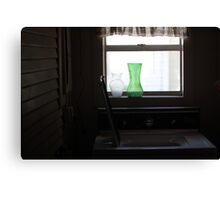 window, domestic Canvas Print