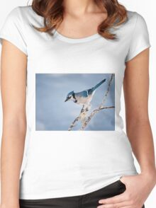 Blue Jay Women's Fitted Scoop T-Shirt