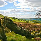 Hawnby Moor #4 by Trevor Kersley