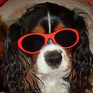 Charlie Girl the COOL DUDE !!! by AnnDixon