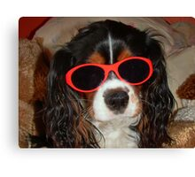 Charlie Girl the COOL DUDE !!! Canvas Print