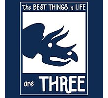 The Best Things In Life Are Three (Triceratops) Photographic Print