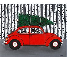 Bringing Home the Christmas Tree Photographic Print