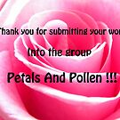 p&p submit banner by rhian mountjoy