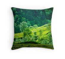 Highland Hillside Throw Pillow