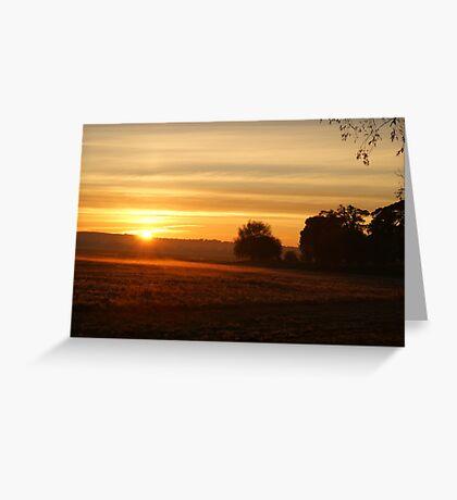Stray sunrise Greeting Card