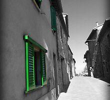 Green Shutters by Luke Griffin