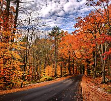 NH Autumn Road 4 by Edward Myers