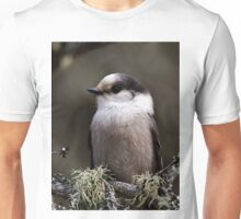 Gray Jay -  Algonquin Park, Ontario - 2 Unisex T-Shirt