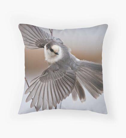 Gray Jay Take Off Throw Pillow