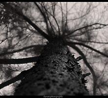 bottom to top... by Karan  Vir Singh