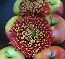 apples decorate chrythansmum double:)) by LisaBeth