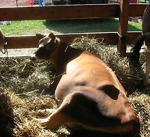 Ol Bessie at Rest by vigor