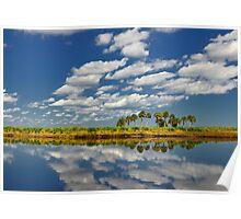 Florida Swamp Poster