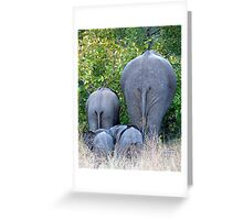 Elephant Roadblock Greeting Card