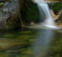 Stony Creek Falls by Anne McKinnell