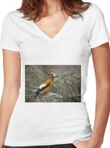 Evening Grosbeak On Pine 2 Women's Fitted V-Neck T-Shirt