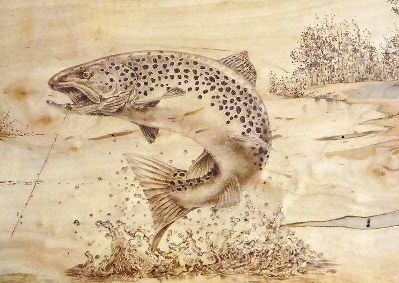 Quot Brown Trout Quot By Jerrywayne Anderson Redbubble