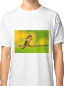 Barn Swallow On Barbwire Classic T-Shirt