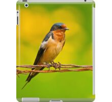 Barn Swallow On Barbwire iPad Case/Skin