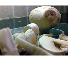 Mummy mushroom looks on forlornly as her family are sliced and diced for dinner...... Photographic Print