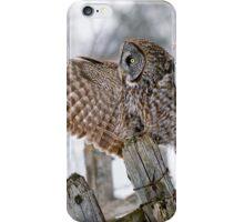 Great Grey Owl - Dunrobin, Ontario iPhone Case/Skin