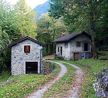 Swiss Country Road, Take Me Home... Ticino, Switzerland 2010 by Igor Pozdnyakov