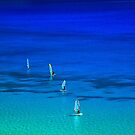 Surfing in Lefkada by Hercules Milas