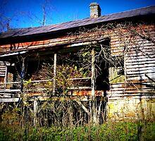 Old WV Home by Paul Lubaczewski