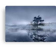 Morning Mist - Tarn Hows Canvas Print