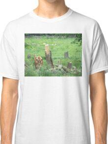 Farm scene Classic T-Shirt