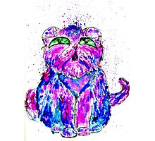 Painted Cat Photographic Print