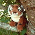 The Happy Tree Tiger's Favorite Tree by Vivian Eagleson