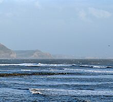 Grey And Windy Day In Lyme by lynn carter