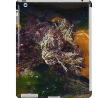 Seaweed iPad Case/Skin