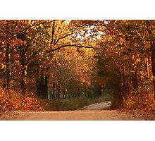 Fall on Bellview Road Photographic Print
