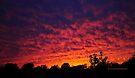 The dazzling sky III by PJS15204